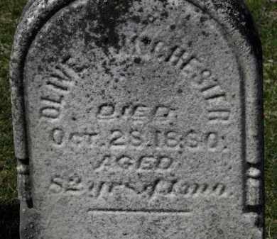 WINCHESTER, OLIVE - Erie County, Ohio | OLIVE WINCHESTER - Ohio Gravestone Photos