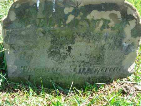 ?, ELEANOR - Fairfield County, Ohio | ELEANOR ? - Ohio Gravestone Photos