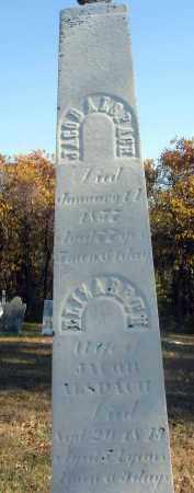 ALSPACH, ELIZABETH - Fairfield County, Ohio | ELIZABETH ALSPACH - Ohio Gravestone Photos