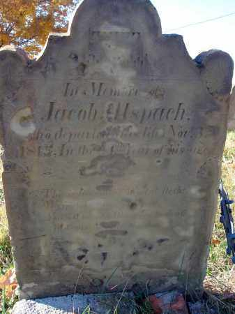 ALSPACH, JACOB - Fairfield County, Ohio | JACOB ALSPACH - Ohio Gravestone Photos