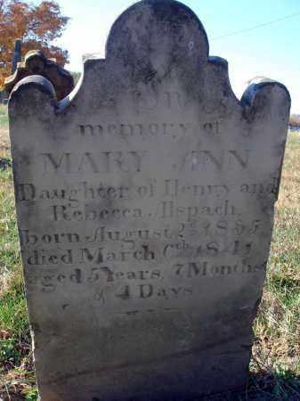 ALSPACH, MARY ANN - Fairfield County, Ohio | MARY ANN ALSPACH - Ohio Gravestone Photos