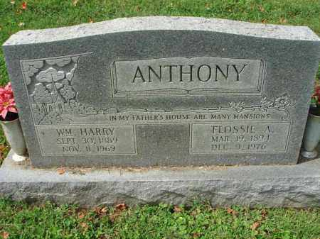 ANTHONY, WILLIAM HARRY - Fairfield County, Ohio | WILLIAM HARRY ANTHONY - Ohio Gravestone Photos