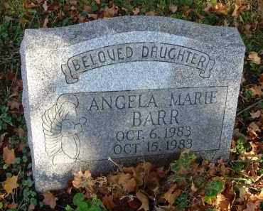 BARR, ANGELA MARIE - Fairfield County, Ohio | ANGELA MARIE BARR - Ohio Gravestone Photos