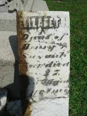 BECK?, ELIZABETH - Fairfield County, Ohio | ELIZABETH BECK? - Ohio Gravestone Photos