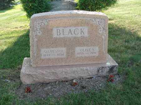 BLACK, OLIVE S. - Fairfield County, Ohio | OLIVE S. BLACK - Ohio Gravestone Photos