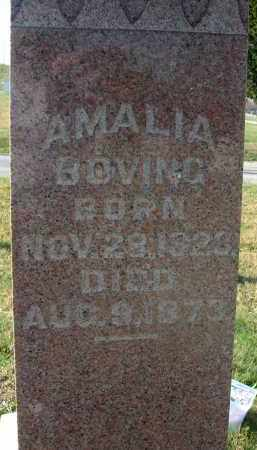 BOVING, AMALIA - Fairfield County, Ohio | AMALIA BOVING - Ohio Gravestone Photos