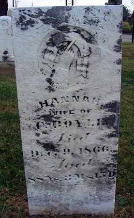 BOYLE, HANNAH - Fairfield County, Ohio | HANNAH BOYLE - Ohio Gravestone Photos