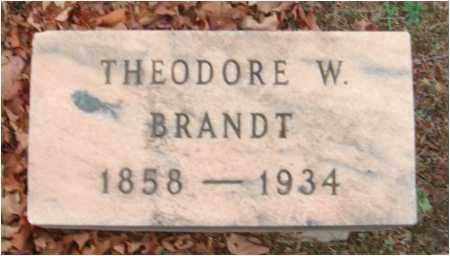 BRANDT, THEODORE W. - Fairfield County, Ohio | THEODORE W. BRANDT - Ohio Gravestone Photos