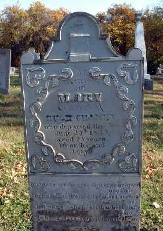 MOOK CHANEY, MARY - Fairfield County, Ohio | MARY MOOK CHANEY - Ohio Gravestone Photos