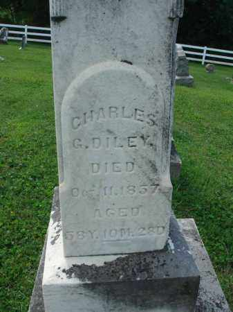 DILEY, CHARLES G. - Fairfield County, Ohio | CHARLES G. DILEY - Ohio Gravestone Photos