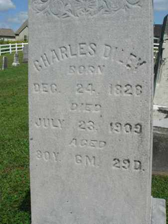 DILEY, CHARLES - Fairfield County, Ohio | CHARLES DILEY - Ohio Gravestone Photos