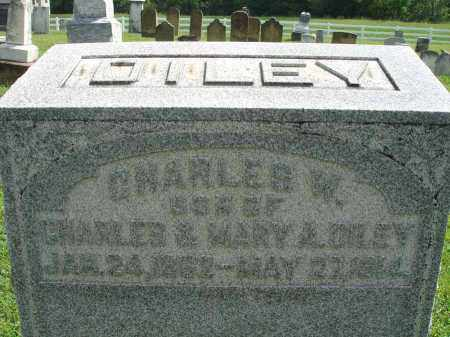 DILEY, CHARLES W. - Fairfield County, Ohio | CHARLES W. DILEY - Ohio Gravestone Photos
