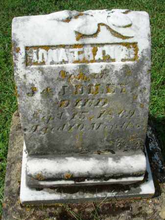 DILEY, JONATHAN A. - Fairfield County, Ohio | JONATHAN A. DILEY - Ohio Gravestone Photos