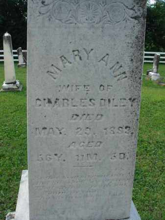 DILEY, MARY ANN - Fairfield County, Ohio | MARY ANN DILEY - Ohio Gravestone Photos