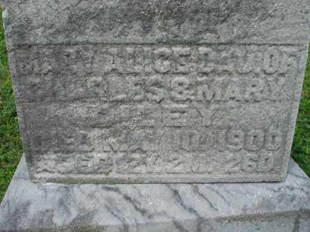 DILEY, MARY ALICE - Fairfield County, Ohio | MARY ALICE DILEY - Ohio Gravestone Photos