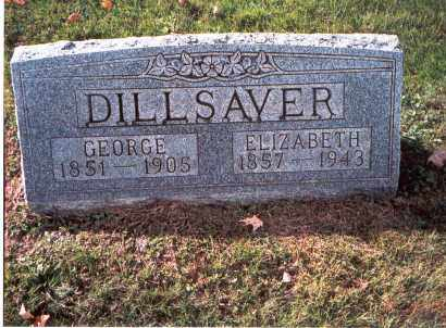 DILLSAVER, ELIZABETH - Fairfield County, Ohio | ELIZABETH DILLSAVER - Ohio Gravestone Photos