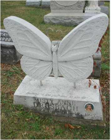DRESBACH, MISTY ANNE - Fairfield County, Ohio | MISTY ANNE DRESBACH - Ohio Gravestone Photos