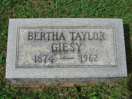 TAYLOR GIESY, BERTHA - Fairfield County, Ohio | BERTHA TAYLOR GIESY - Ohio Gravestone Photos
