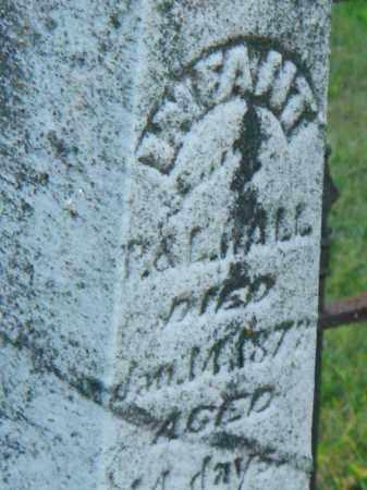 HALL, INFANT - Fairfield County, Ohio | INFANT HALL - Ohio Gravestone Photos