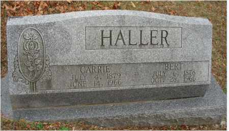 HALLER, BERT - Fairfield County, Ohio | BERT HALLER - Ohio Gravestone Photos