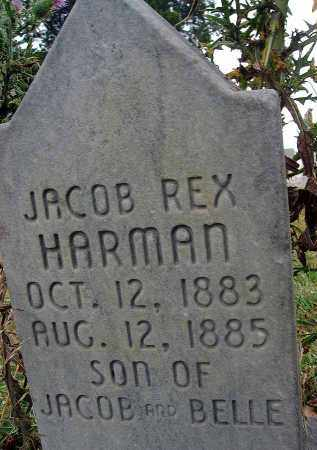 HARMAN, JACOB REX - Fairfield County, Ohio | JACOB REX HARMAN - Ohio Gravestone Photos