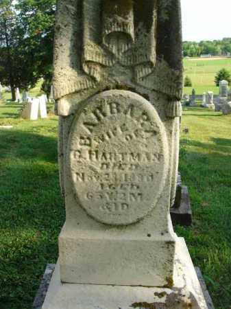 HARTMAN, BARBARA - Fairfield County, Ohio | BARBARA HARTMAN - Ohio Gravestone Photos