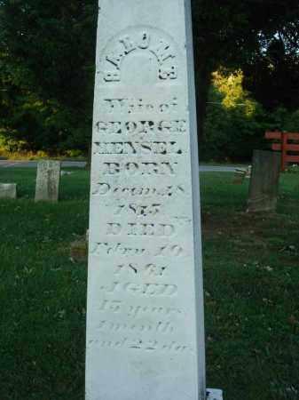 HENSEL, SALOME - Fairfield County, Ohio | SALOME HENSEL - Ohio Gravestone Photos