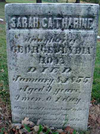 HOY, SARAH CATHARINE - Fairfield County, Ohio | SARAH CATHARINE HOY - Ohio Gravestone Photos