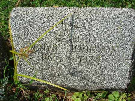JOHNSON, DENVIE? - Fairfield County, Ohio | DENVIE? JOHNSON - Ohio Gravestone Photos