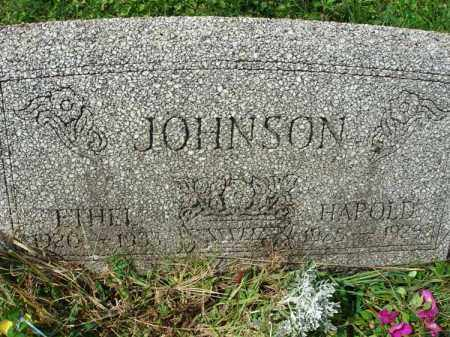 JOHNSON, ETHEL - Fairfield County, Ohio | ETHEL JOHNSON - Ohio Gravestone Photos