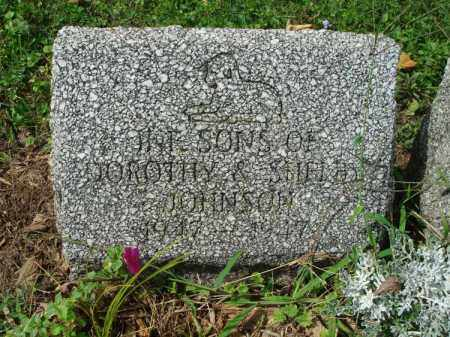 JOHNSON, INF. SONS - Fairfield County, Ohio | INF. SONS JOHNSON - Ohio Gravestone Photos