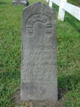 K?, SIRENUS - Fairfield County, Ohio | SIRENUS K? - Ohio Gravestone Photos