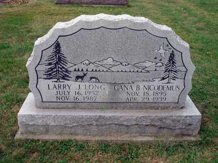 LONG, LARRY J. - Fairfield County, Ohio | LARRY J. LONG - Ohio Gravestone Photos