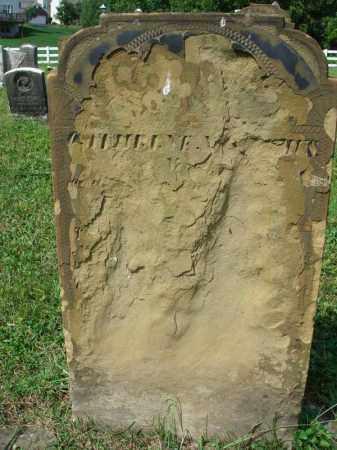 NICODEMUS, CATHERINE - Fairfield County, Ohio | CATHERINE NICODEMUS - Ohio Gravestone Photos