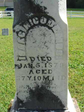 NICODEMUS, ISAAC - Fairfield County, Ohio | ISAAC NICODEMUS - Ohio Gravestone Photos