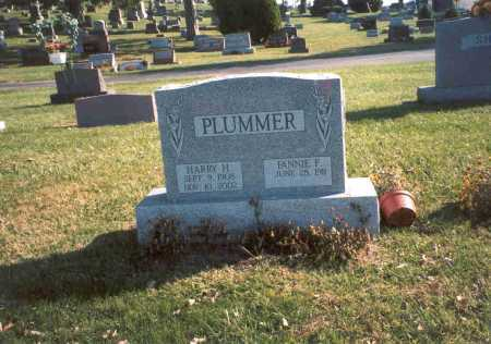 CLARK PLUMMER, FANNIE F. - Fairfield County, Ohio | FANNIE F. CLARK PLUMMER - Ohio Gravestone Photos