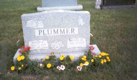 PLUMMER, BETTY D. - Fairfield County, Ohio | BETTY D. PLUMMER - Ohio Gravestone Photos