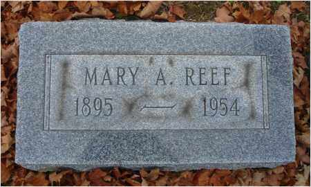 REEF, MARY A. - Fairfield County, Ohio | MARY A. REEF - Ohio Gravestone Photos