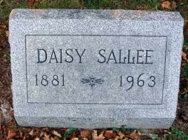 SALLEE, DAISY - Fairfield County, Ohio | DAISY SALLEE - Ohio Gravestone Photos