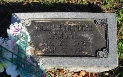 SAMSAL, WILLIAM HERBERT - Fairfield County, Ohio | WILLIAM HERBERT SAMSAL - Ohio Gravestone Photos