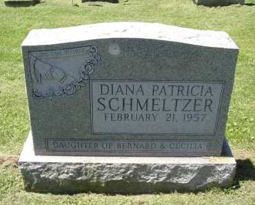 SCHMELTZER, DIANA PATRICIA - Fairfield County, Ohio | DIANA PATRICIA SCHMELTZER - Ohio Gravestone Photos