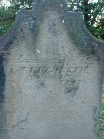 SPANGLER, ELIZABETH - Fairfield County, Ohio | ELIZABETH SPANGLER - Ohio Gravestone Photos