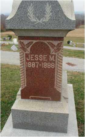 STRUCKMAN, JESSE M. - Fairfield County, Ohio | JESSE M. STRUCKMAN - Ohio Gravestone Photos