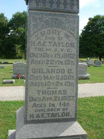TAYLOR, ORLANDO C. - Fairfield County, Ohio | ORLANDO C. TAYLOR - Ohio Gravestone Photos