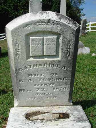 TUSSING, CATHARINE A. - Fairfield County, Ohio | CATHARINE A. TUSSING - Ohio Gravestone Photos