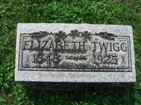 TWIGG, ELIZABETH - Fairfield County, Ohio | ELIZABETH TWIGG - Ohio Gravestone Photos