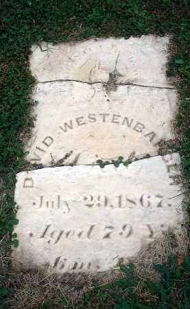 WESTENBARGER, DAVID - Fairfield County, Ohio | DAVID WESTENBARGER - Ohio Gravestone Photos