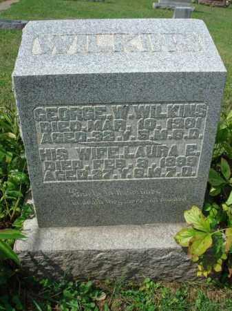 WILKINS, LAURA E. - Fairfield County, Ohio | LAURA E. WILKINS - Ohio Gravestone Photos