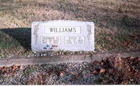 WILLIAMS, ROSE P. - Fairfield County, Ohio | ROSE P. WILLIAMS - Ohio Gravestone Photos