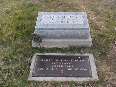 BUSH, HARRY MCKILLIP - Fayette County, Ohio | HARRY MCKILLIP BUSH - Ohio Gravestone Photos
